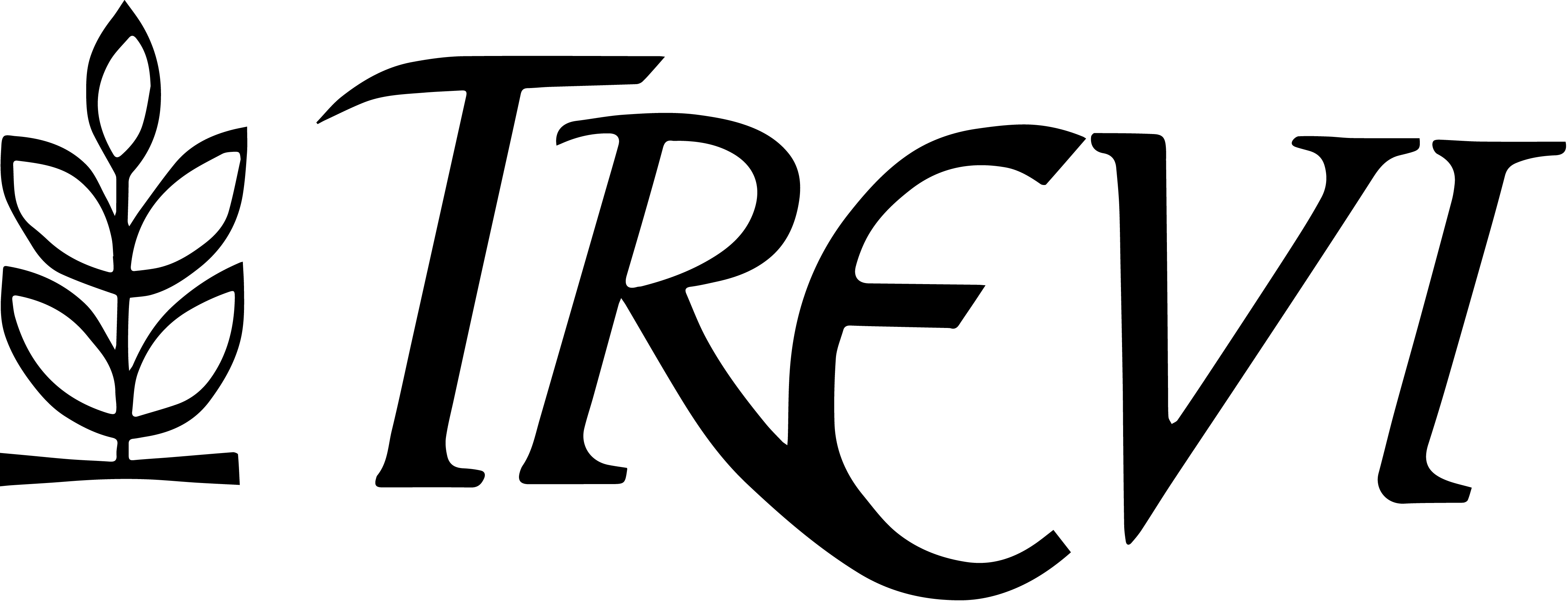 Centro de estética Trevi